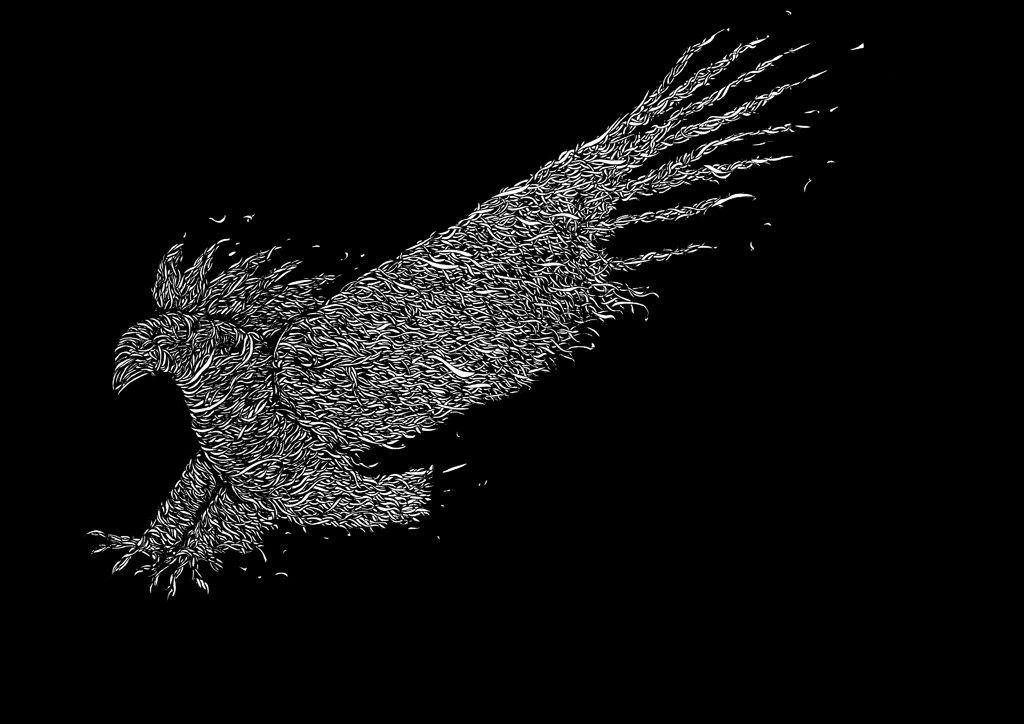 no-name-bird-5